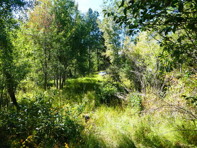 Ravalli County Residential Lots & Land For Sale: Bunkhouse Road