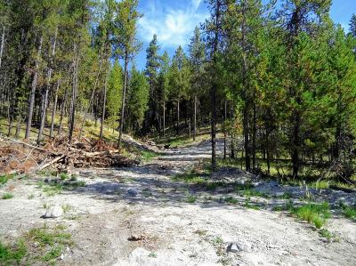 Flathead County Residential Lots & Land For Sale: Nhn U.s. Hwy 2 West
