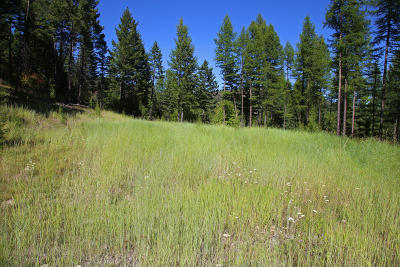Flathead County Residential Lots & Land For Sale: 2300 McMannamy Draw