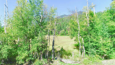 Flathead County Residential Lots & Land For Sale: Nhn Heavenly Way