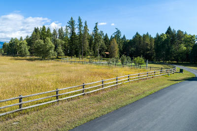 Whitefish Single Family Home For Sale: 685 Walker Meadow Road