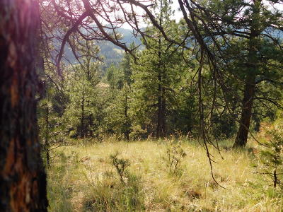 Cascade  Residential Lots & Land For Sale: Dearborn River Road
