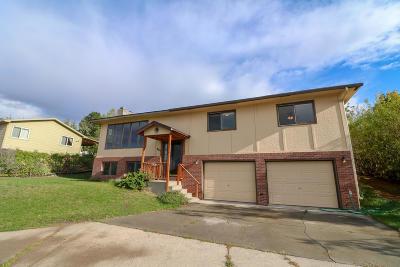 Missoula Single Family Home For Sale: 824 Normans Lane