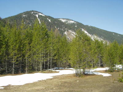 Flathead County Residential Lots & Land For Sale: 146 Us Hwy 2 East