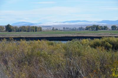 Cascade, Craig, Wolf Creek Residential Lots & Land For Sale: Willow Bend Lane