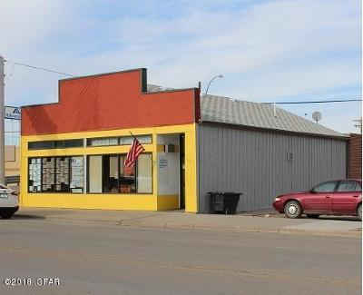 Commercial For Sale: 413 Main Street
