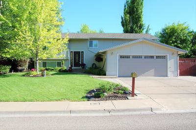 Great Falls Single Family Home For Sale: 1208 25th Avenue South West
