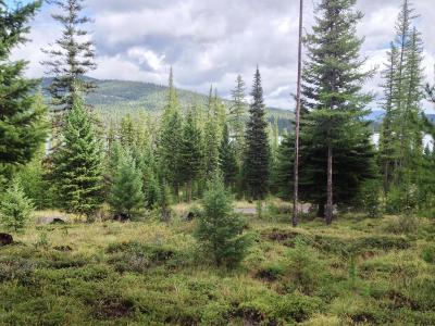 Marion Residential Lots & Land For Sale: 1365 South McGregor Lake Road