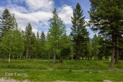 Columbia Falls Residential Lots & Land For Sale: 227 Gleneagles Trail