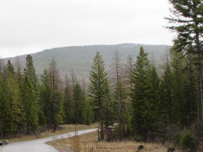 Kila Residential Lots & Land For Sale: 517 Haskil Ranch Road