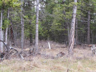 Kila Residential Lots & Land For Sale: 445 Haskil Ranch Road