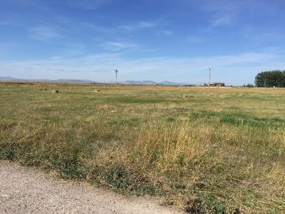 Lake County Residential Lots & Land For Sale: 11th Avenue North West
