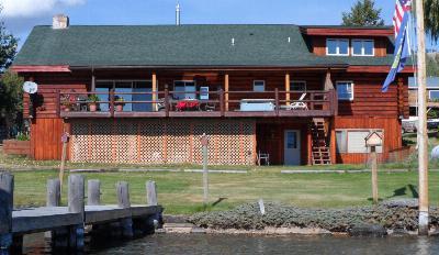 Lake County Single Family Home For Sale: 43075 Liddell Lane
