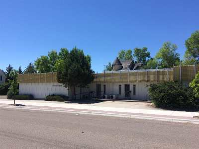 Commercial For Sale: 234 East Glendale