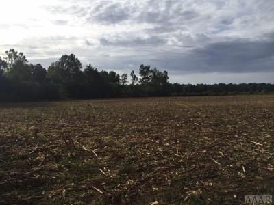 Moyock Land/Farm Under Contract: 867 South Mills Road