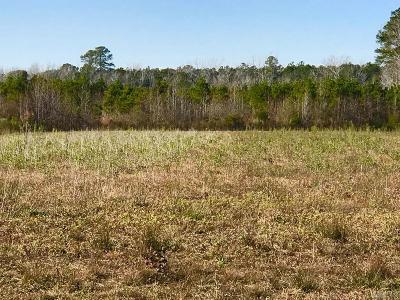 Currituck County Land/Farm For Sale: 126 Shawboro Road