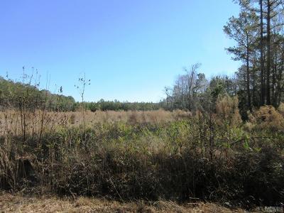 Gates County Land/Farm For Sale: Tbd Zion Road