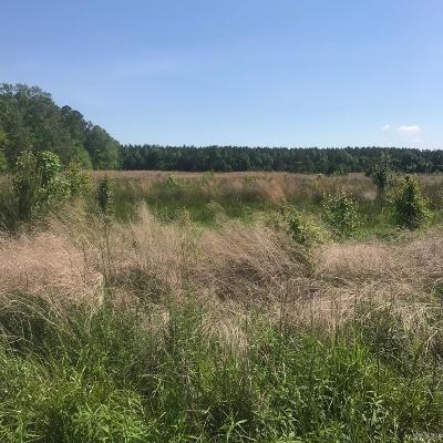 Currituck County Land/Farm For Sale: 109 Amy Landing Road