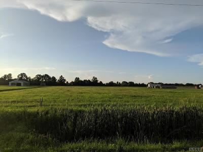 Camden County Land/Farm For Sale: 312 Hwy 158