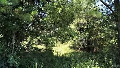 Currituck County Land/Farm For Sale: 1795 Caratoke Hwy