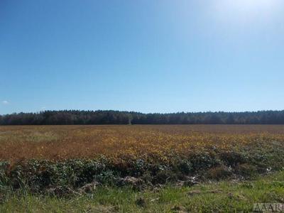 Camden County Land/Farm For Sale: 135 Beech Ridge Road
