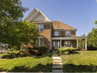 Burlington Single Family Home For Sale: 3986 Kincade Dr