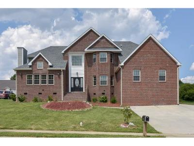 Graham Single Family Home For Sale: 1116 Castle Dr