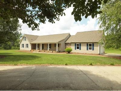 Mebane Single Family Home For Sale: 5975 Chestnut Oak Dr