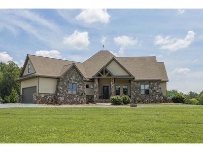 Burlington Single Family Home For Sale: 3819 Danieley Water Wheel Rd