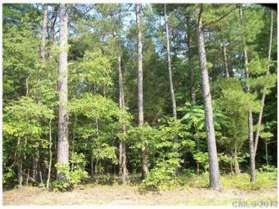 Residential Lots & Land For Sale: 004 Pipeline Road