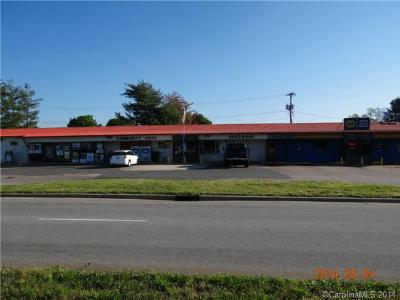 Commercial For Sale: 11260 Statesville Boulevard