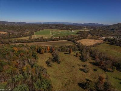 Etowah NC Residential Lots & Land Under Contract-Show: $6,900,000