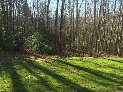 Hendersonville Residential Lots & Land For Sale: LOT 62 E Chimney Crossing #62