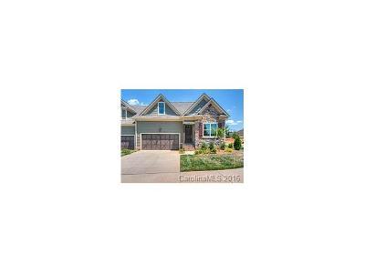 Gastonia Single Family Home For Sale: 3008 Village Ridge Drive