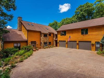 Asheville Single Family Home For Sale: 503 Webb Cove Road