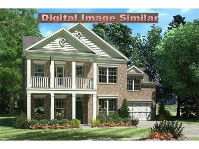 Cornelius Single Family Home For Sale: 21904 Torrence Chapel Road #9