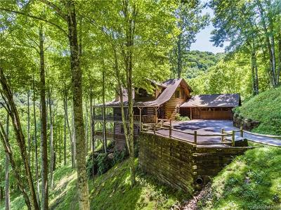 Maggie Valley Single Family Home For Sale: 110 Dotsu Trail
