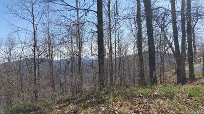 Black Mountain Residential Lots & Land For Sale: 2999 Creston Drive #Lot C-40