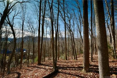 Buncombe County Residential Lots & Land For Sale: 841 Blackthorne Lane #Lot 33