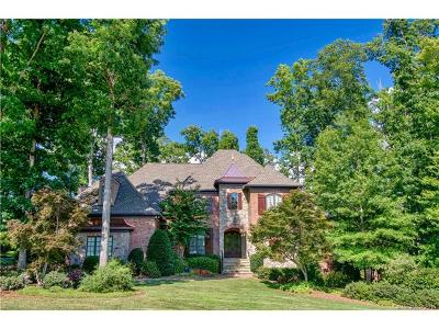 Waxhaw Single Family Home For Sale: 8108 Skyecroft Commons Drive
