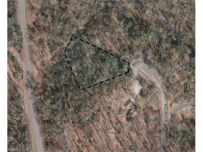 Transylvania County Residential Lots & Land For Sale: Adawehi Lane #L110/U1