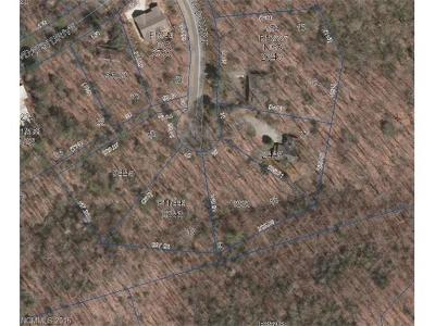 Transylvania County Residential Lots & Land For Sale: Selu Court #Unit 11