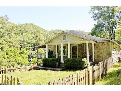 Bryson City Single Family Home For Sale: 2571 Brush Creek Road