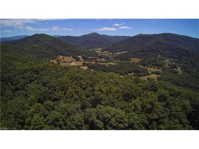 Weaverville Residential Lots & Land For Sale: King Road #1, 2, 3,