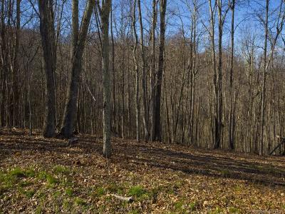 Waynesville Residential Lots & Land For Sale: Lot #58-R Comanche Trail #58-R