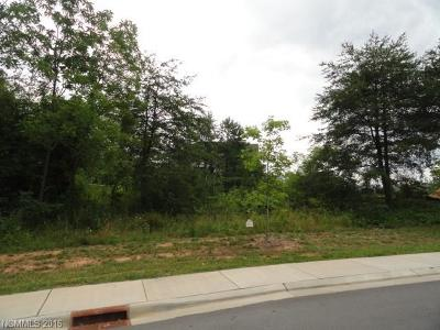 Buncombe County Residential Lots & Land For Sale: 5 Versailles Lane #17