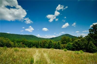 Arden Residential Lots & Land For Sale: 5 Smokey Ridge Trail #113