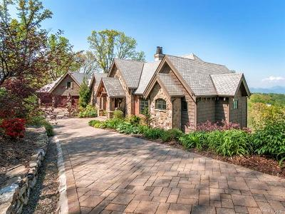 Asheville NC Single Family Home For Sale: $4,400,000