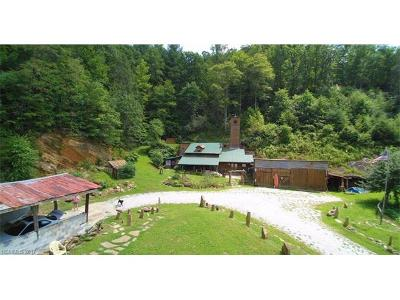 Bryson City Single Family Home For Sale: 10288 Lower Alarka Road