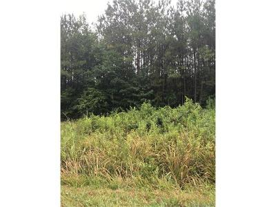 Residential Lots & Land For Sale: Lot 1 Catawba River Road